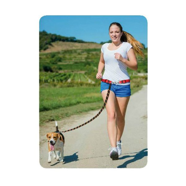 correa deporte perro