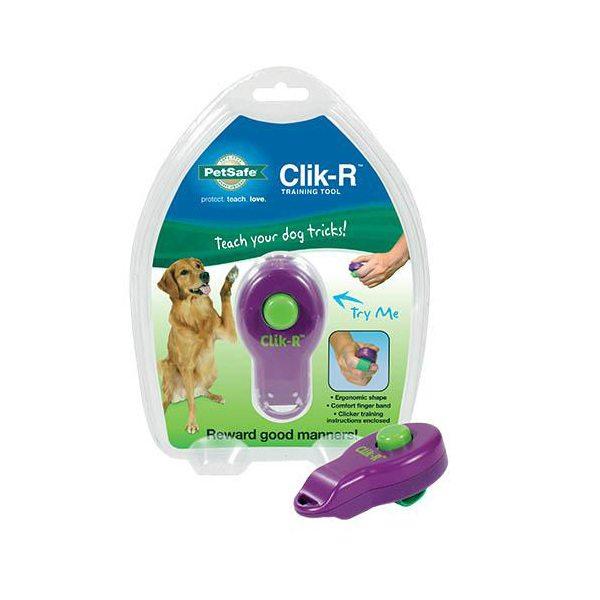 educador click perro