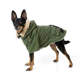 ap51070-chaqueta-hispter-verde-para-perros