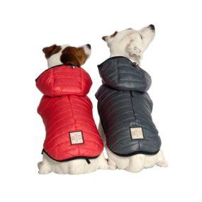 ap11168-abrigo-impermeable-acolchado-para-perros