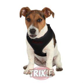 ap15881_1-set-para-perros-cachorros-con-correa-y-arnes-acolchado