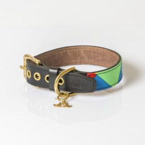 ap26036_5-collar-arlequin-de-colores-para-perros