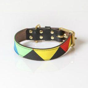 ap26036_6-collar-arlequin-de-colores-para-perros