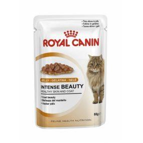 ap9167-comida-humeda-para-gatos-royal-canin