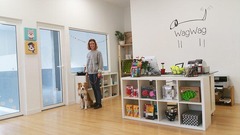 82f8e266b WagWag: La nueva guardería para perros en Madrid | ARISTOPET