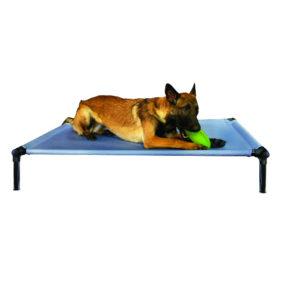 AP24173_2 Starmark Dogzone para perros