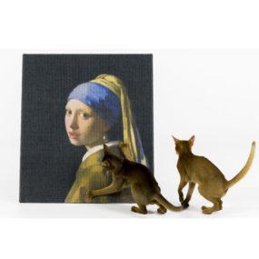Rascador para gatos de la Joven de la perla AP7024_1