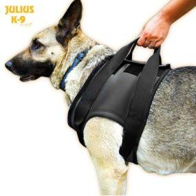 Arnes rehabilitacion Julius AP155578_2