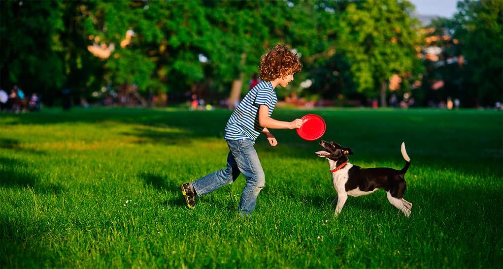 niño-parque