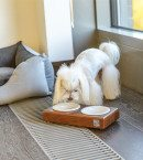 BowlAndBone-Republic-bowl-for-dog-DUO-amber-ceramic-and-bed-CLASSIC-grey-LS1S