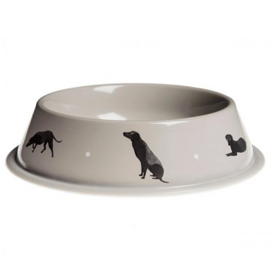 bowl perro