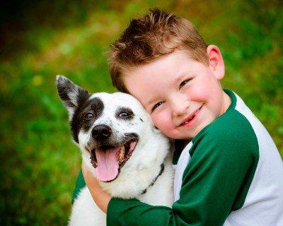 empatia-animales