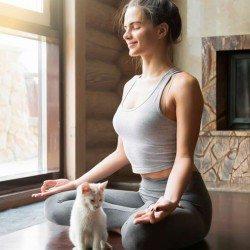 yoga-cat-facebook