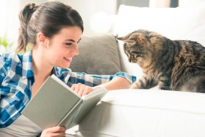 lecturas-gatos