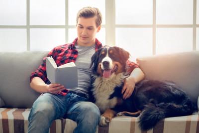 lecturas-perros