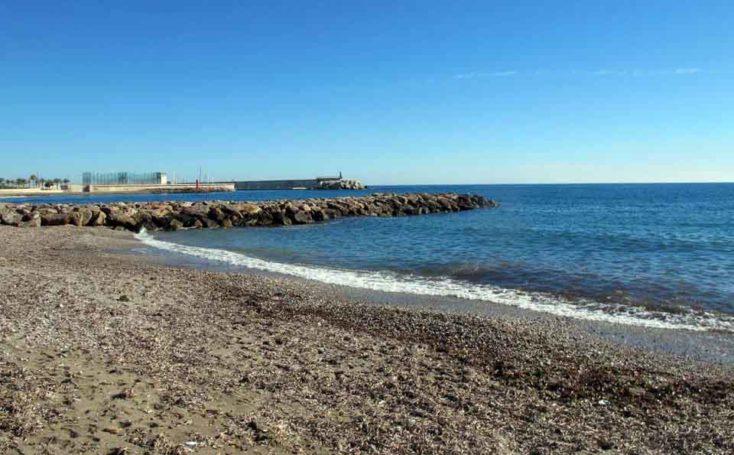 Playa para perros 2019: MURCIA