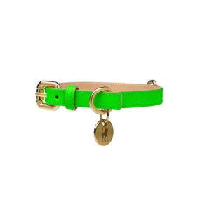 Collar para Perro de Cuero Verde Neón
