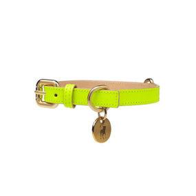 Collar para Perro de Cuero Amarillo Neón