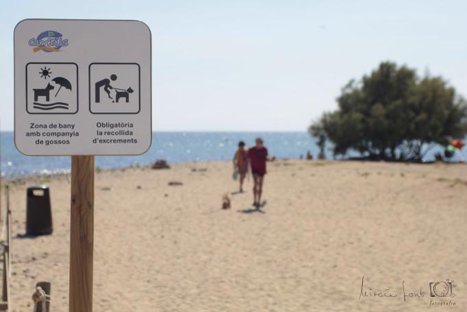 Cartel-de-la-Playa-para-Perros-en-Cambrils
