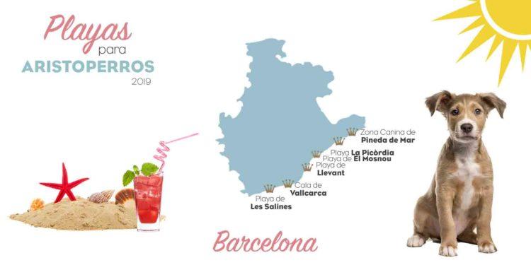 Playas para perros 2019: BARCELONA