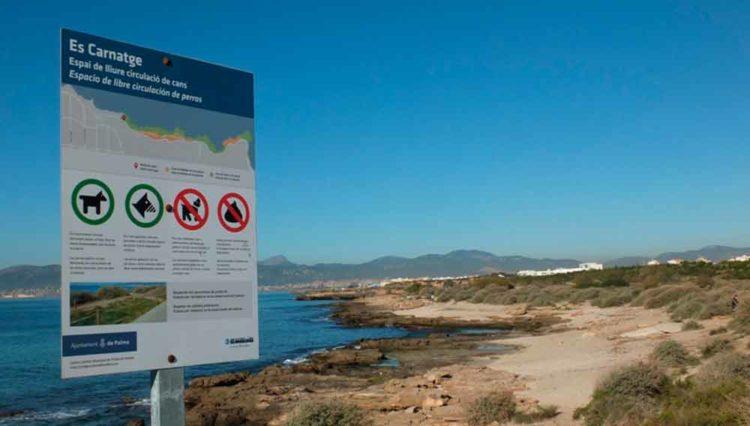 Playas para perros 2019: MALLORCA