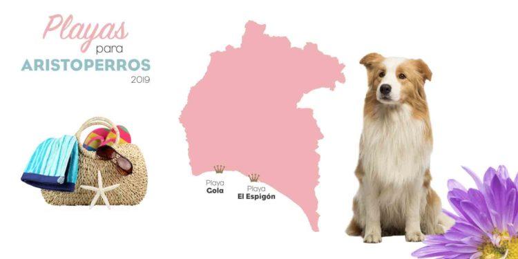 Playas para perros 2019: HUELVA