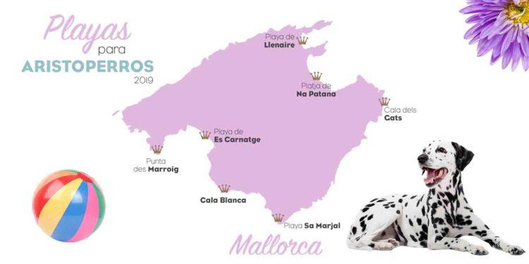 Playas con perros 2019: Mallorca