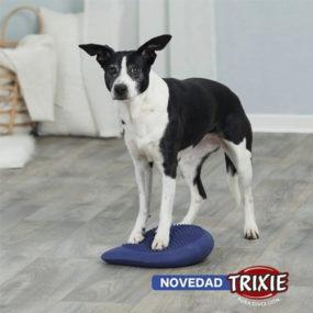 trixie-cojin-equilibrio-2