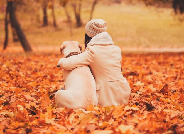 perro-dueño-otoño