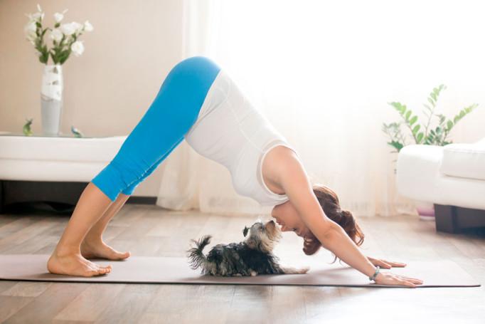 yoga-con-perro