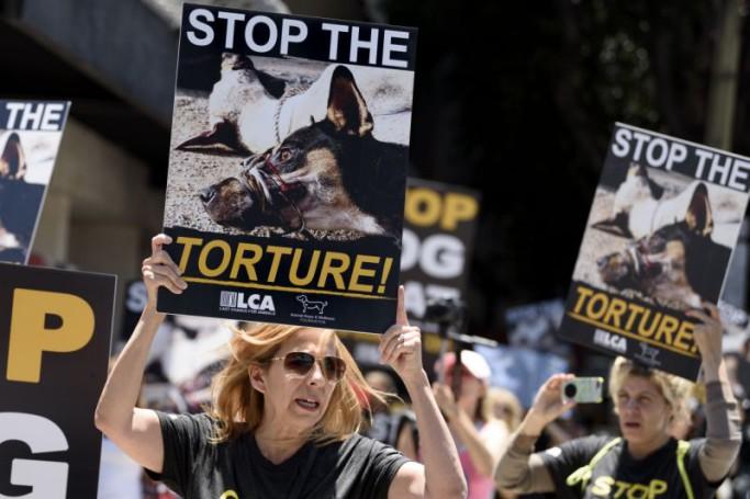 masacre-perros-asia