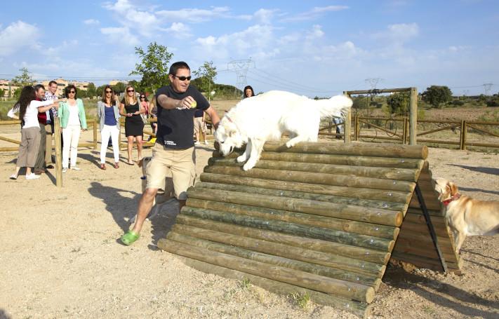 Parque-canino-de-Las-Rozas