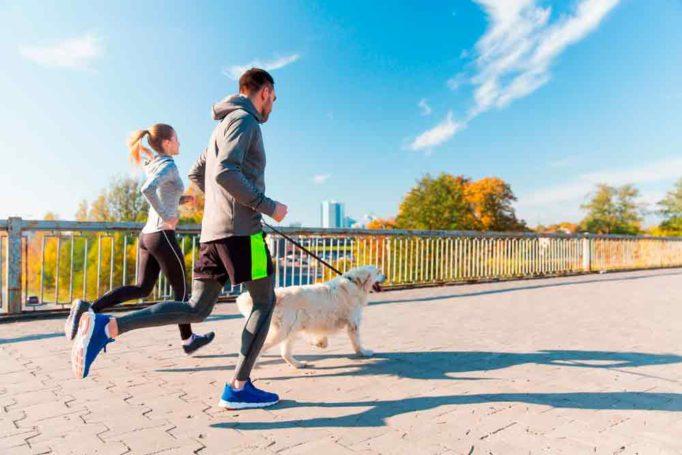consejos para hacer deporte con tu perro