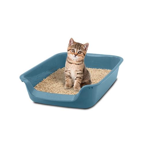 Bandeja Arenero para Gato Junior Toilet