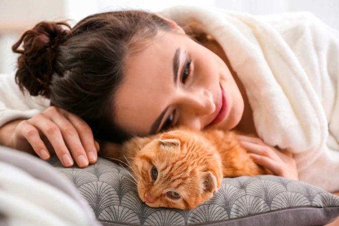 Los ruidos fuertesHay ciertos ruidos, que no les gustan a lo animales. A los gatos en especial, los ruidos bruscos y fuertes, les espantan, porque sienten miedo. Piensan que les van a hacer algo. Seguro que se esconderá o refugiará en algún escondite de la casa.