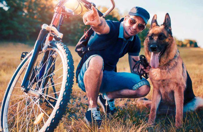 Consejos y accesorios para montar en bici con tu perro
