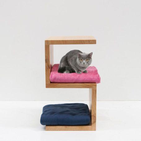 consejos para adaptar tu casa a tu gato
