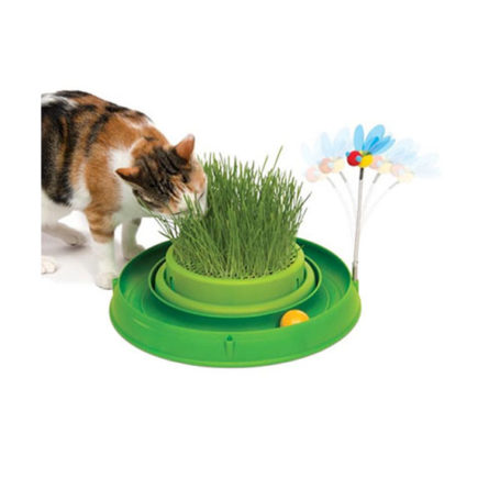 productos para entretener a tu gato
