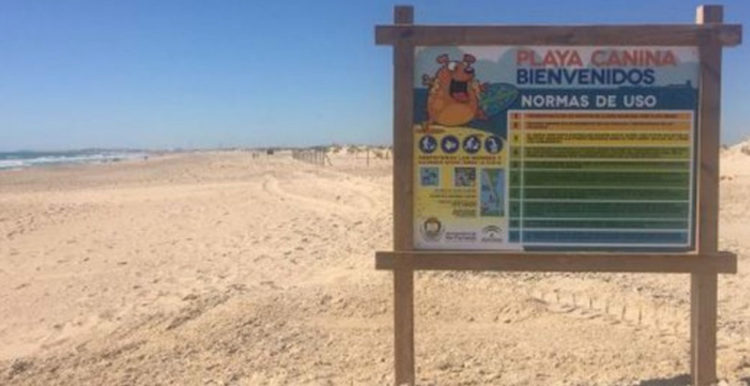 Playas para perros 2019: Cádiz