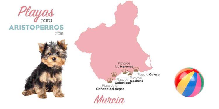 playas para perros 2019: MURCIA