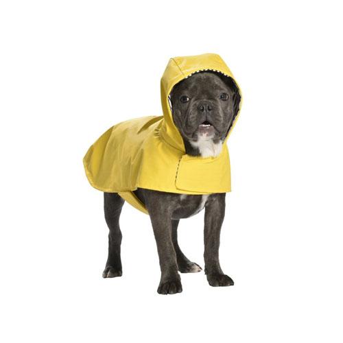 Impermeable para Perro Amarillo Leo Bobby