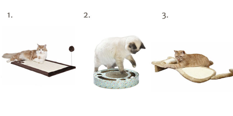 Rascadores para gato