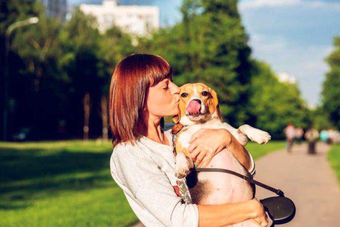 la personalidad de los perros cambia