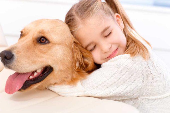 terapias de universitarios con perros