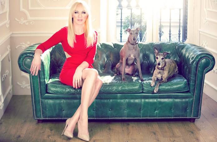 topacio fresh galey galerista galgos perros mascotas sofa tourquesa